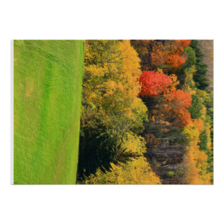 """Fall Fore Lanscape 28"""" x 20"""", Poster Paper (Matte)"""