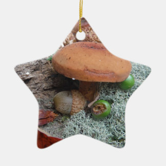 Fall Forest floor Acorns mushrooms and moss Ceramic Star Decoration