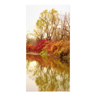 Fall Forest River Scene Photo Card