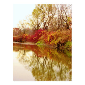 Fall Forest River Scene Postcard