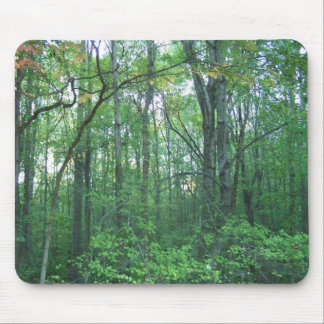 Fall Forestry Mouse Mat