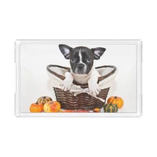 Fall French Bulldog Acrylic Tray