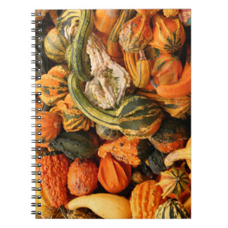 Fall Gourd Background Notebooks