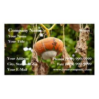 Fall Gourd Pack Of Standard Business Cards