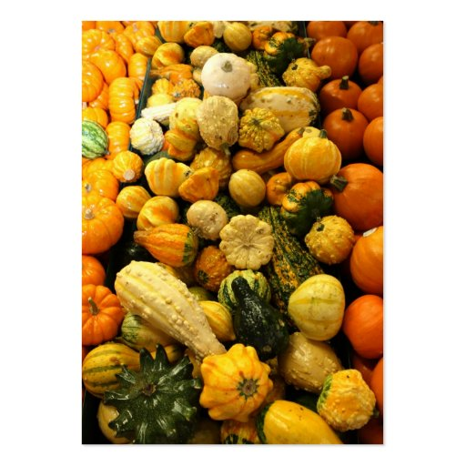 Fall Gourds Business Card Templates
