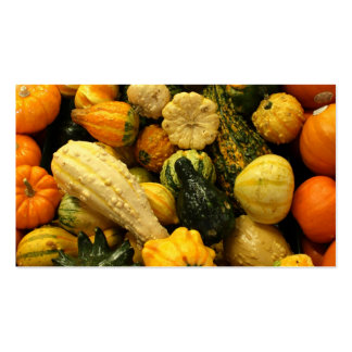 Fall Gourds Business Card