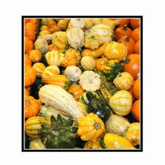 Fall Gourds & Mini Pumpkins Photo Sculpture