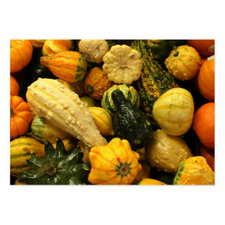 Fall Gourds Pack Of Chubby Business Cards