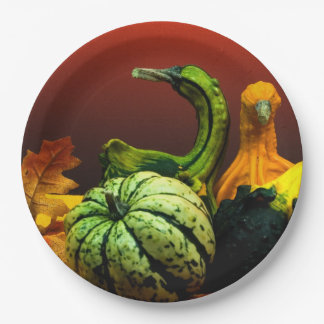 Fall Gourds Rustic Autumn Wedding Colors 9 Inch Paper Plate