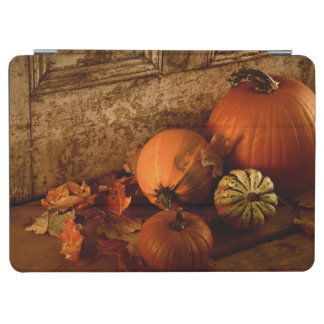 Fall Harvest/ Pumpkins And Gourds At The Door iPad Air Cover