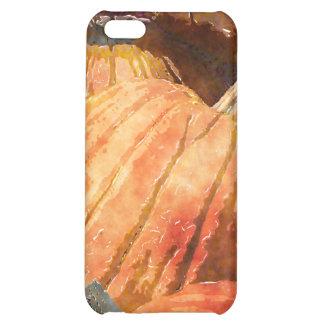 FALL HARVEST PUMPKINS iPhone 5C CASE