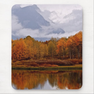 FALL IN GRAND TETON NATIONAL PARK MOUSE PAD