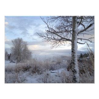 Fall in Jackson Hole, WY Photo Print