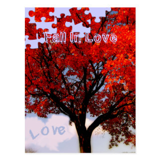 Fall In Love Postcard