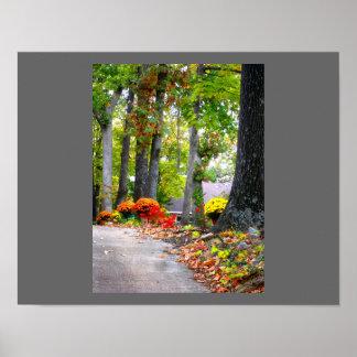 Fall in Missouri Poster