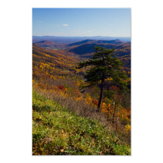 Fall in Shenandoah National Park, Virginia Poster