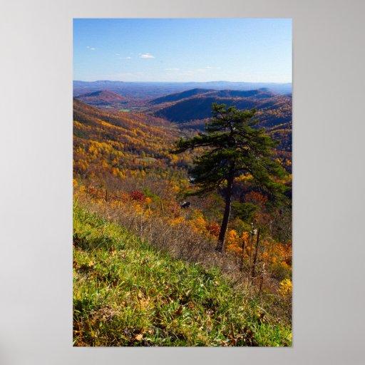 Fall in Shenandoah National Park, Virginia Poster