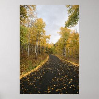 Fall in Sundance Resort, Utah Poster
