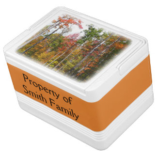 Fall in the Forest Colorful Autumn Photography Igloo Cool Box