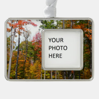 Fall in the Forest Colorful Autumn Photography Silver Plated Framed Ornament