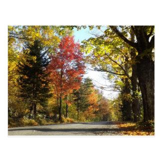 Fall in Warren Vermont Postcard