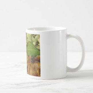 Fall is Coming Basic White Mug