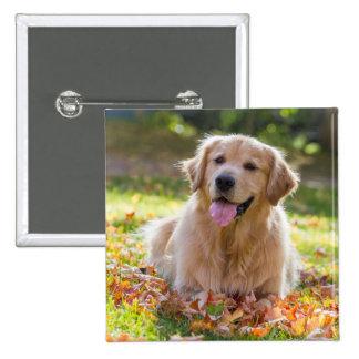 Fall Joey 15 Cm Square Badge