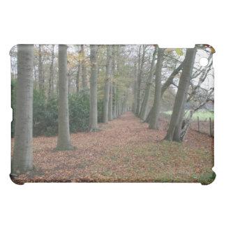 Fall landscape cover for the iPad mini