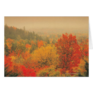 Fall landscape, New Hampshire, USA Greeting Card