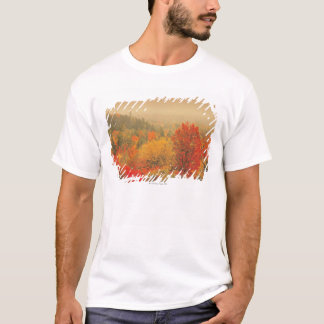 Fall landscape, New Hampshire, USA T-Shirt