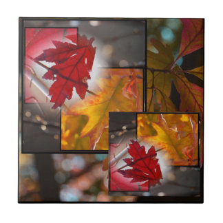 Fall Leaf Collage Small Tile