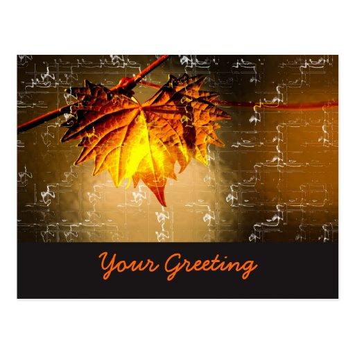 Fall Leaf Colors Postcard
