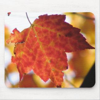 Fall Leaf Mouse Mat