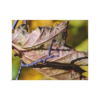 Fall leaf nature photo canvas print