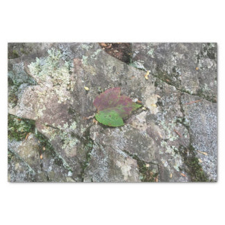 Fall Leaf on Rock Tissue Paper