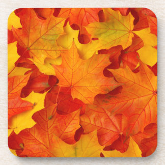 Fall Leaves Coaster