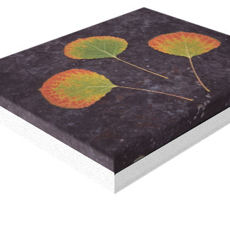 Fall leaves gallery wrap canvas
