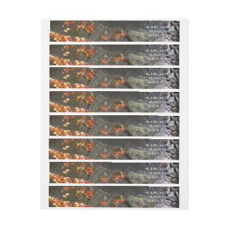 Fall Leaves in Waterfall I Autumn Photography Wrap Around Label