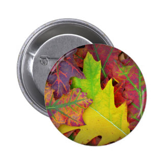 Fall Leaves in yellow, red, orange and Purple 6 Cm Round Badge