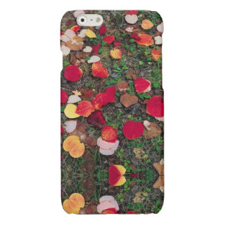 Fall leaves iPhone case iPhone 6 Plus Case