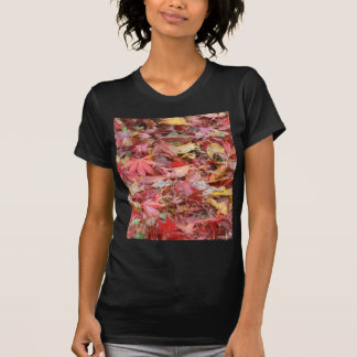 Fall Leaves Ladies Black T-Shirt