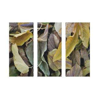 Fall Leaves on Three Panels Gallery Wrap Canvas
