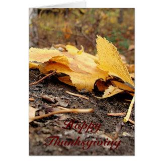Fall Leaves on Tree Stump Card