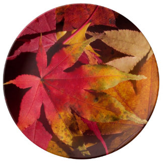 Fall leaves plate, autumn dishes, custom kitchen plate