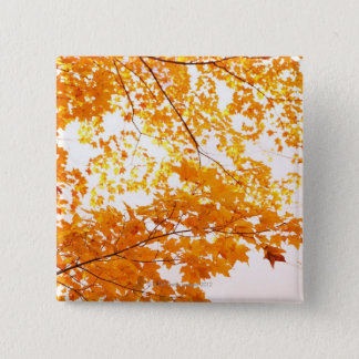 Fall Leaves Reflection 15 Cm Square Badge