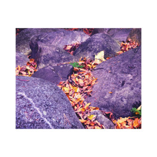 Fall leaves & rocks Canada Canvas Print