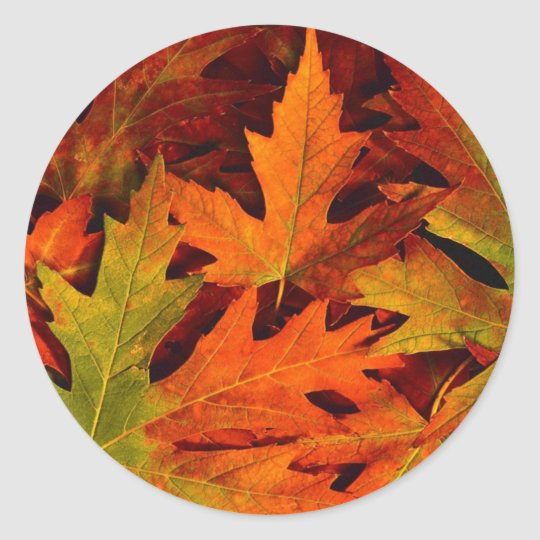 fall leaves sticker