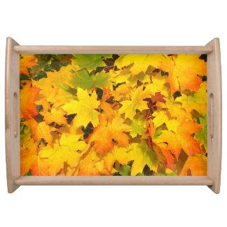 Fall leaves ~ Tray