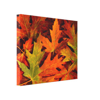 Fall leaves wrapped canvas 1