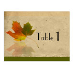 Fall Maple Leaf on Faux Paper Wedding Table Number Post Cards